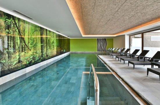 hotel-fischer-schwimmbad-verglasungen-01